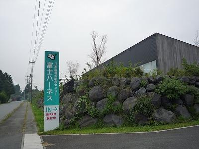 P1000313.jpg